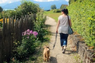 Gesundes Spazieren gehen
