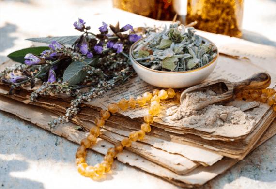 Die Heilkräuter der Hildegard von Bingen
