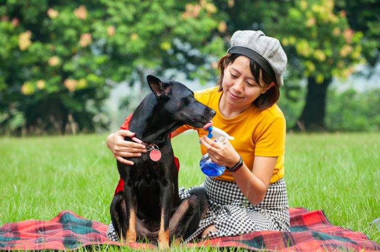 Naturheilkunde für Hund und Katze