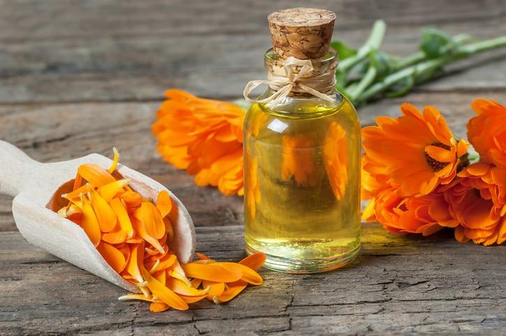 Heilöl aus Ringelblumen hilft  bei Verletzungen und Sonnenbrand