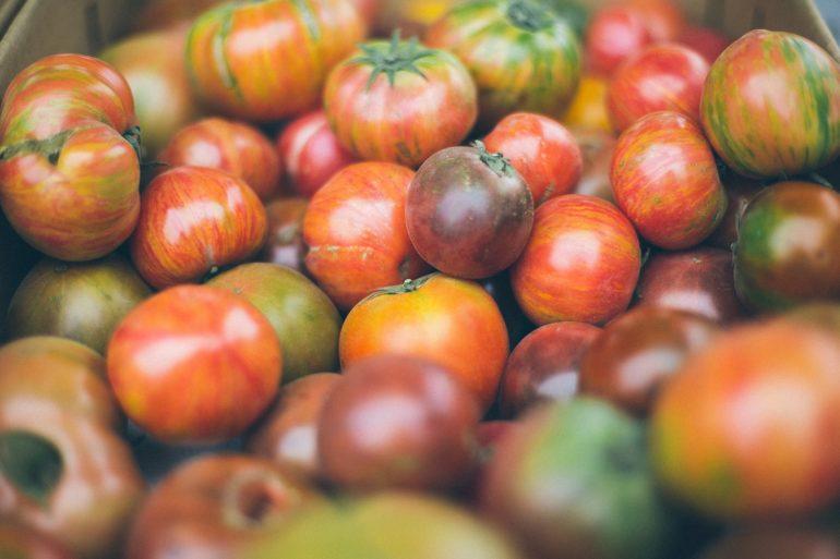 Tomaten in Hülle und Fülle